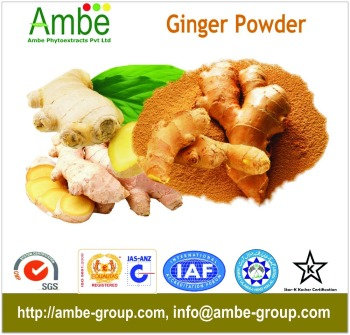 Zingiber officinale Oleoresin 40% Gingerols - Ginger Extract - ORDER NOW!