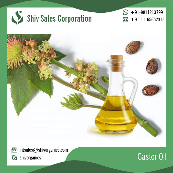 Organic Best Castor Oil with Competitive Price