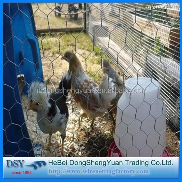 Hexagonal Chicken Wire Mesh Fence/ Lowes Chicken Wire Mesh Roll/ Hexagonal Wire Mesh Chicken Coop