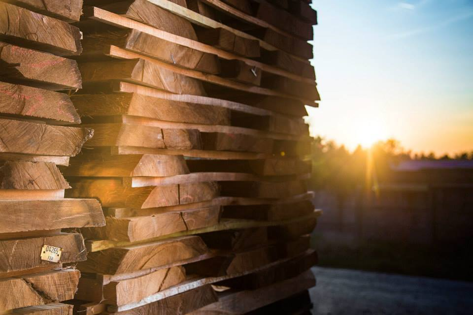 Burma Teak Logs Burma Square Logs And Sawn Timber Buy