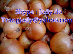 FRESH YELLOW ONION _ THE MOST COMPETITIVE PRICE