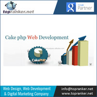 Top/Qualified and Experianced CakePHP Developers
