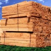 Softwood Lumber Board - 2x4, 4x4, 2x8 - Any cut - $0 Deposit, 30 Day to Pay***