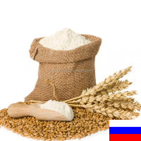 russia wheat flour 50kg with competitive wheat flour price