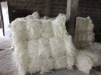 Other Fiber Product Type and Spinning Use High Quality/Purity 100%Natural raw sisal fiber UG grade,High Quality UG grade sisal