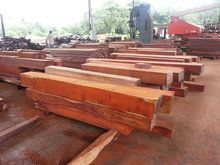 IROKO, BUBINGA, SAPELLE, PADOUK HARD WOOD FROM CONGO FOR SALE