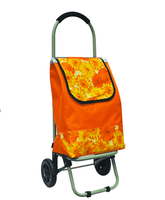 2 Wheels Folding Shopping Cart With Chair