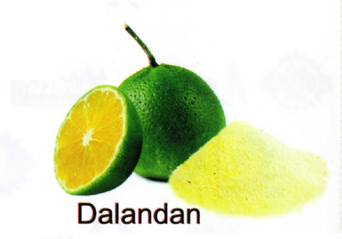 All-Natural Spray Dried Dalandan Powder
