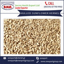 Good Quality Top Selling Sunflower Kernels from Top Ranked Exporter