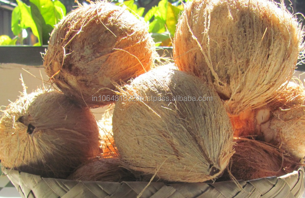 Fresh Farm Matured Coconuts