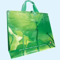 Vietnam factory Wholesale PP woven shopping bag Grocery plastic bag