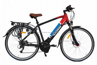 Sport Electric Bike Middle Drive 8FUN Motor (TDE11Z)