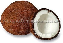 Best Quality Coconut suppliers to Pakistan