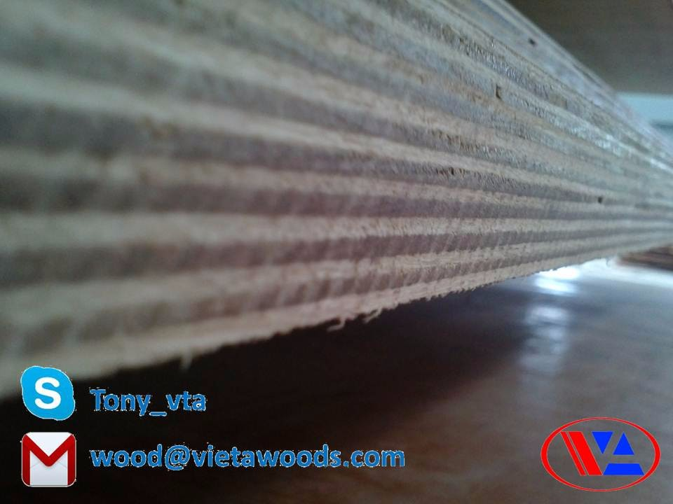 18mm Film Faced Plywood waterproof / shuttering plywood construction material