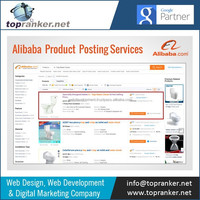 List your Products in Top Alibaba Pages with Our Alibaba Product Posting Services