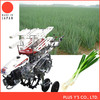 Light weight smooth work Onion planter for sale Made in Japan