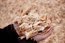 Wood chips 100% wood Acacia, rubber