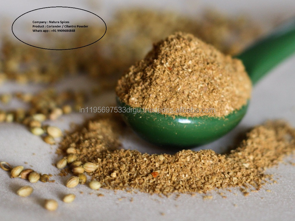 Coriander Seed Extract powder with best quanlity