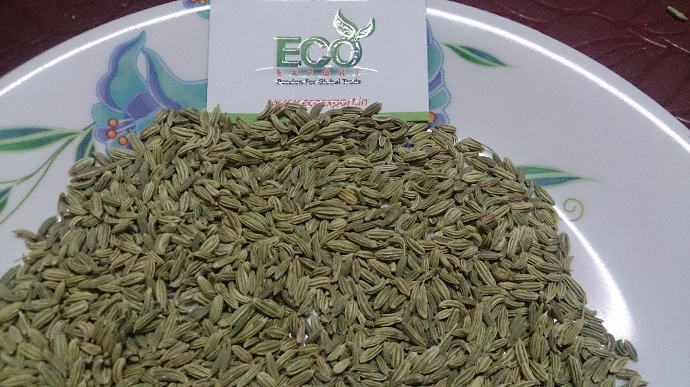 Natural Green Long Life Dried Fennel Seeds
