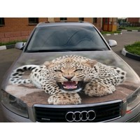 car sticker Leopard