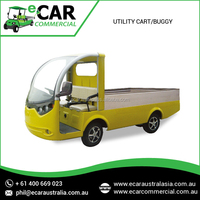Luxurious Collection of 2 Seat Electric Mini Utility Truck (LT-S2.Ahy) at Very Low Price