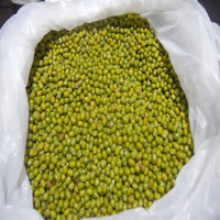 High Quality Green Mung Beans for Sell