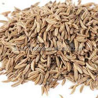 Natural white cumin seeds , Top quality white cumin seeds , bulk cumin seeds
