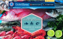 Frozen Food Exporter Alibaba Minisite Design and Ranking Optimization Available at Reliable Price