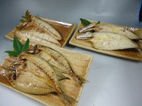 Tasty whole eaten opened dried barracuda with edible bone for dry fish exporters