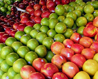 Fresh Red star Hongxing apple for new season for sale