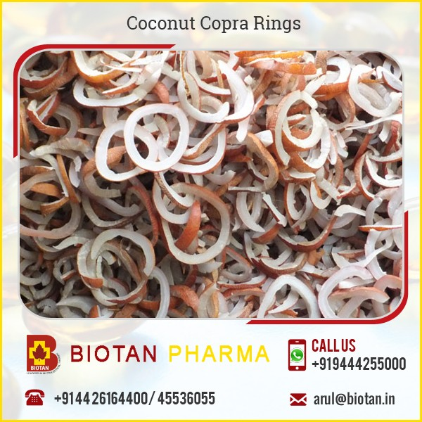 Easy To Digest New Arrival Dry Coconut Copra Rings Available for Bulk Buyer