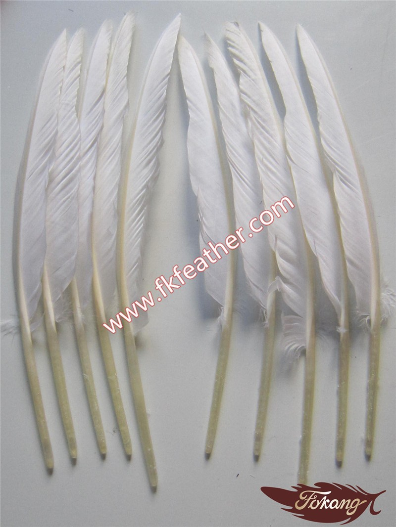 Wholesale craft goose feather for feather pen decoration for Where to buy craft feathers
