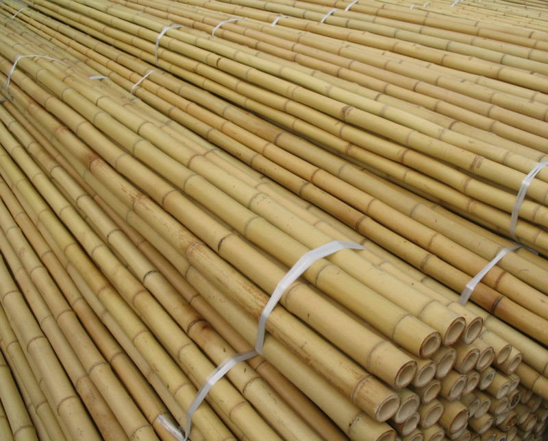 High Quality raw bamboo poles for building