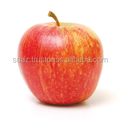 Gala Apples , Fresh Red Apples , Pakistan apple fruit exporter , Apples exporter , Cheap Apples