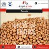 100 Natural Big Size Peanuts At