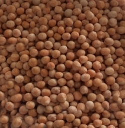 Bulk Yellow Whole Polished Peas Origin Ukraine