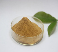 100% natural Ginkgo Biloba Extract