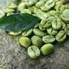 Green Coffee Beans With Wonderful Quality