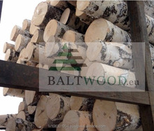White birch logs, Baltic Birch logs
