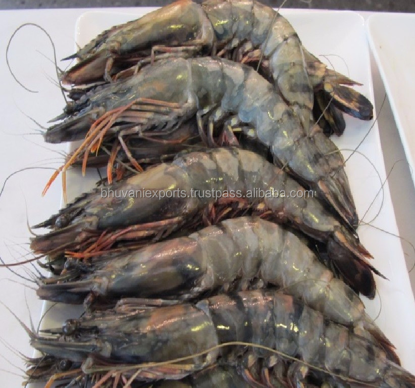 Fresh Tiger Prawns/Wild Shrimps/Sea Food!