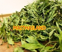 Dried Stevia Leaf Stevia Extract Stevia from THAILAND