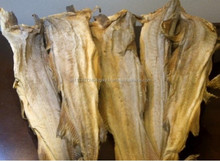 Dried Norway stockfish/ Iceland stockfish