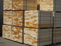 TEAK TIMBER/HARDWOOD LOGS/SAWN TIMBER