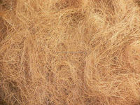 Coconut Coir Fiber Buyer