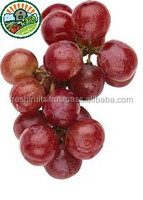 Fresh Fruit from Viet Nam with High Quality and Competitive Price Grape