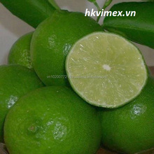 Product: import-export lemons seedless from viet nam ,best price