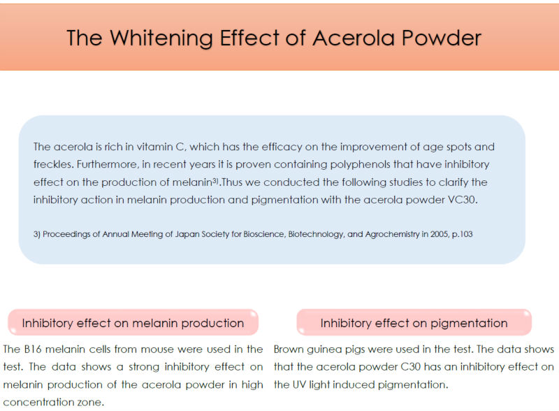 Japanese High Quality Acerola Raw Material Powder Made In Japan As Natural Antioxudant For Health Foods And Dietary Supplement