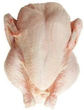 Grade A / Grade B Halal Whole frozen chicken - Brazil / Turkey Origin