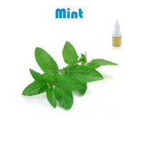 Mint Flavor For Food Beverage