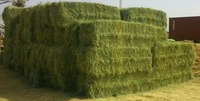Rhode grass bale, grass hay bale, animal feeding grass hay, dry grass hay, cattle feed hay